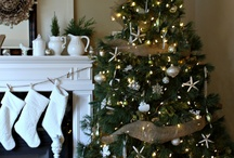 Christmas Decorating / by Sue Peterson