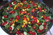 Thai catering Salads (Catering)