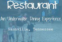 Nashville Adventures
