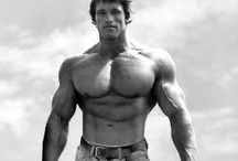 Workout, Fitness and Bodybuilding / Tips, Infos, products about Fitness, Body-Building and Workout