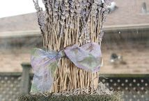Uses for lavender / Uses for all the lavender we got from the fields