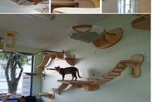 cool animal/cat house ideas