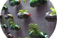 Eco Garden