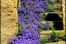 záhradne schody