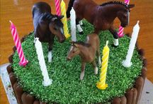 Horse/Pony Birthday Theme