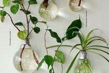 Eko - dekoracje, DIY