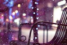 Winter Wonderland / by Deb Bronson McGrath
