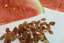 Wtrmln Seed