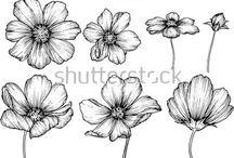 Kwiaty rysunki