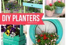 maceteros plantas
