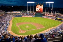 The Ballparks / by Sean Ablett