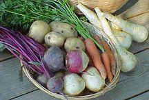 Postharvest / by Foodsnark [ in Niagara ON ]