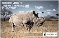 Conservation campaigns / by Louise Fletcher