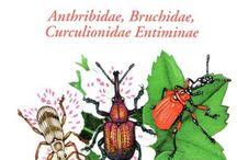 książki o owadach - want list