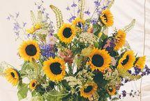 Sarah & Nick ~ Wedding Flowers