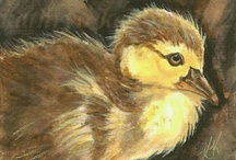 Baby Birds ACEO Theme Week Apr 2012 Art Cards / A monthly, themed ACEO contest held by Art Cards, Editions and Originals group on eBay. Come, look and join the fun!
