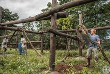 Construction at the Limbe Wildlife Centre / The LWC is always trying to improve the living conditions of the animals. Building or improving the enclosures is part of it