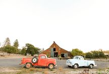 WEDDING // wine country / Winery wedding venues.