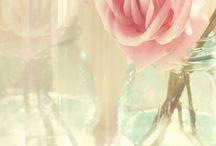 Beautiful Flower Arrangements***!!!!!! / by Katie Corkill
