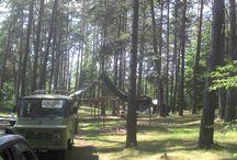 wildlife &camping