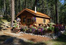 Jack Hanna's Eagle's Nest Tiny House Cabin in Montana