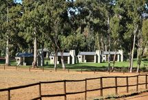 Kaleo Camping / This unique private camping sites, with its own ablution, braai and kitchenette area specially made for the happy camper. Enjoy the peacefulness with chirping birds under the poplar trees!