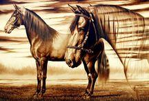 caballo, bello animal. / Imágenes en donde aparecen caballos