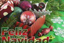 Navidad y Año Nuevo 2015