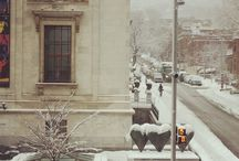 snow / the snow of Montreal