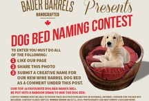Bauer Barrel Contest
