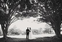 Weddings @ Opal Cove Resort