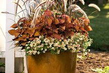 Front porch decor / by Jennifer Muller