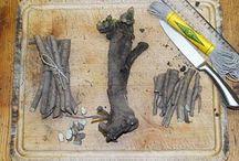 Growing Sea Kale