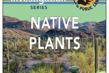 For Kids: Native Plants / A classroom investigation series on native plants. / by Bureau of Land Management