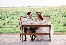 Vineyard Wedding / Wedding located at a vineyard