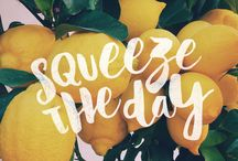 Life & Lemons / When Life Gives You Lemons, make Lemon Cream Pie and Squeeze the Day!