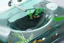 akvárium tárgyak