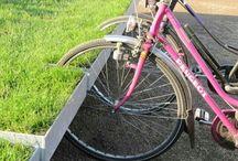 Parkingi rowerowe