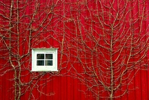 red cabins/houses/barns