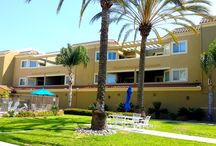 North County Apartment Community / Exterior commercial - residential painting by Maverick Painting San Diego