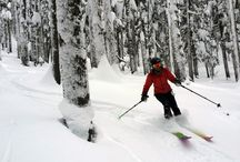 Skiing, boarding, snowshoeing / Cross-country, skiing, snowboarding, snowboard, ski, snowshoe, snowshoeing / by Mail Tribune