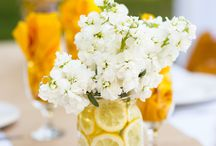 Party Decor / by Connie Hall
