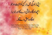 The gReat uRdu sAyings....