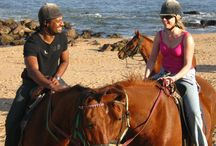 Horse Beach Riding / One of the jobs I work for is www.horsebeachrides.co.za we take people horse riding on the beach. Here are some photos from some of our rides.