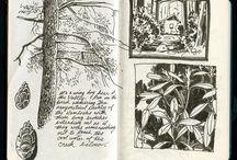 Sketch & Note Book