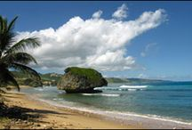 Turks and Cacios / The beautiful Turks and Cacios Islands / by Kathleen Martin