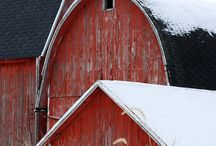 Barns / by Tara Giannini