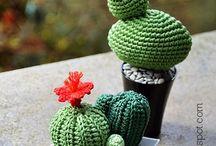amiguruni cactus uncinetto