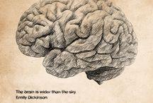 brain,mind,neuropsycology / by Ana Beu Manzano