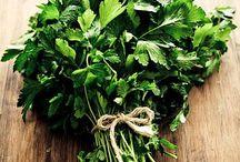 Zöldséges mindenfélék
